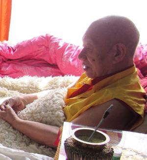 dodrupchen-rinpoche