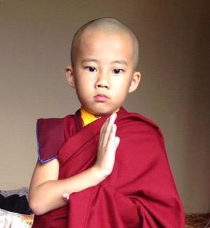 yangsi-rinpoche